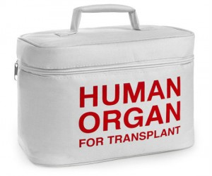 Human organ for transplant lunch cooler –With Human Organ for Transplant written on the side of the tote, your lunch will be safe and ready to be transplanted into your