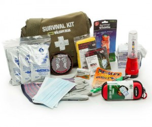 Everything you will need to survive an attack of walking dead people!