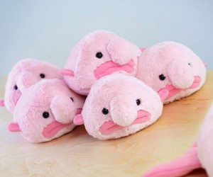 The Blobfish Plush Mini – How could you not love that face?