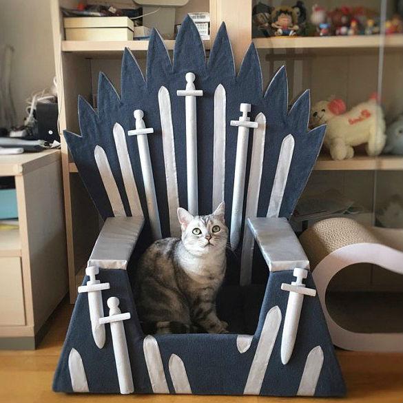 game of thrones cat bed