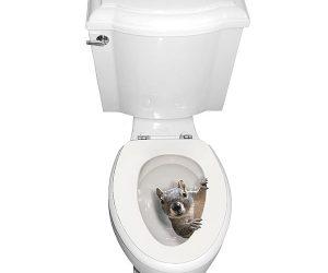 Squirrel Toilet Seat Decal Sticker!