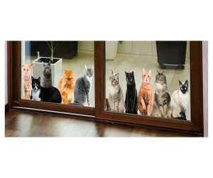 Cat House Window/Door Clings!