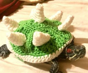 Crochet Bowser Shell For Your Turtle – Dress your turtle up to be a little Bowser in training