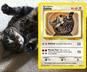Your Pet As A Pokemon Card –  Ever wondered what kind of attacks your pet would have as a Pokemon?