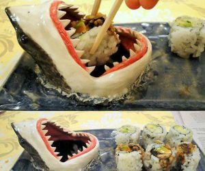 Shark Sushi Plate –Serve up sushi and soy sauce or chips and dip!