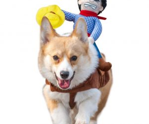 Top 12 Geeky Halloween Dog Costumes – Halloween is near and your dog needs to be ready for trick and treat, too. So what do we do? We compiled