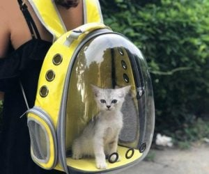 Capsule Pet Travel Backpack – Now you can take your pet with you where ever you go! The space capsule-like design makes the bag cute and fashionable, eye-catching and aesthetically