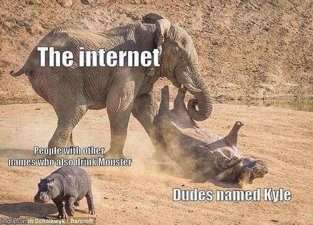 kyle monster energy meme