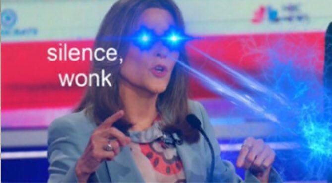 marianne williamson silence wonk