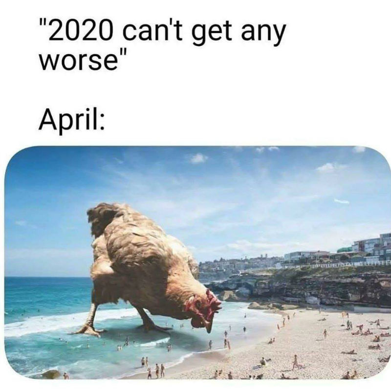 2020 Can't Get Any Worse April - Meme - Shut Up And Take My Money