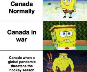 Canadian Corona Virus Meme don't threaten hockey season