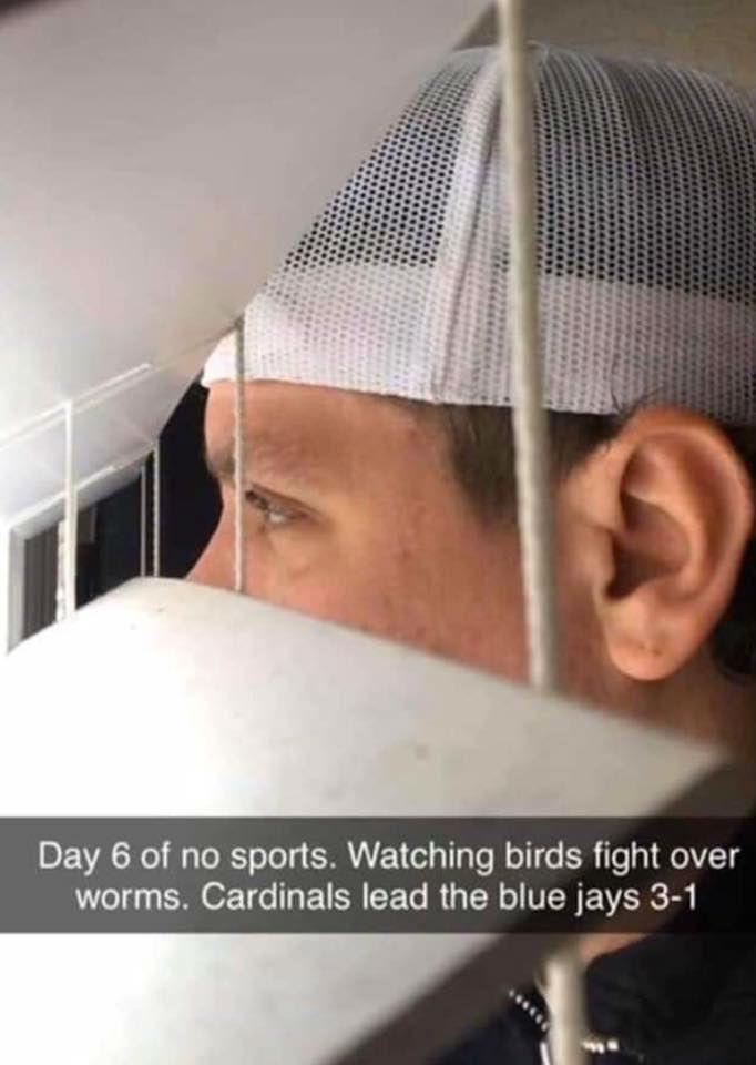 day 6 of no sports coronavirus meme