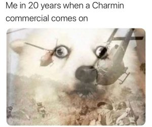 Me In 20 Years When A Charmin Commercial Comes On – Meme