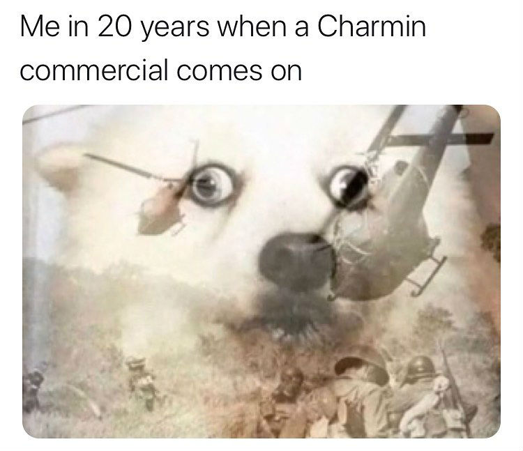 me in 20 years when a charmin commercial comes on