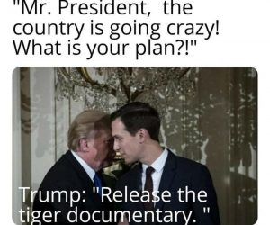 Trump Release The Tiger Documentary – Tiger King Memes