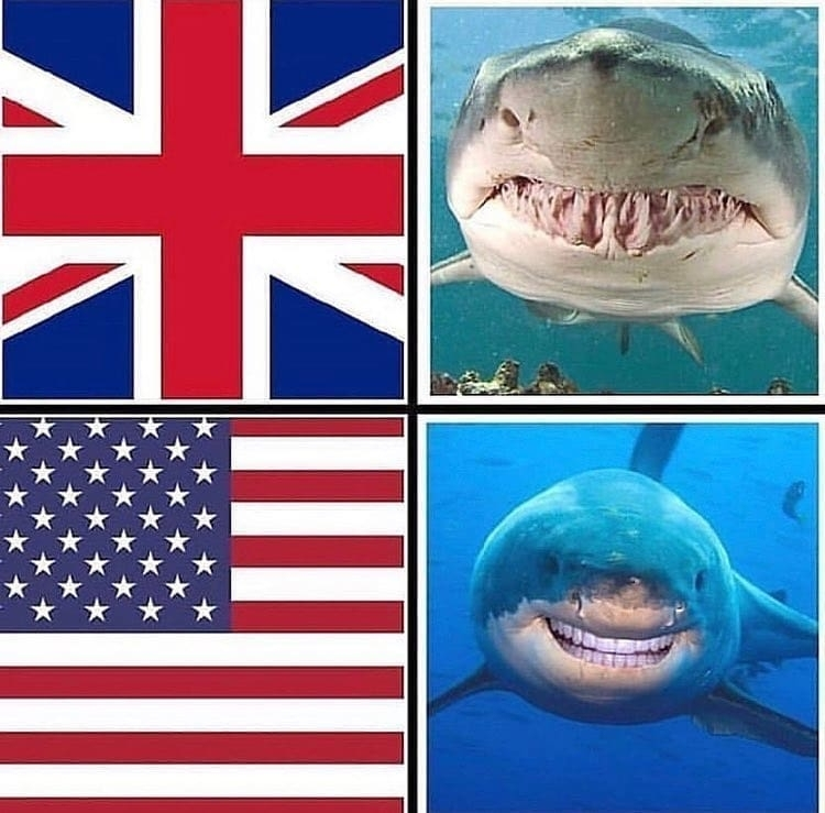 british vs american sharks meme