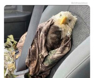 Can't Wait Top Look Like This In An Uber After A Bar Again – Eagle Meme