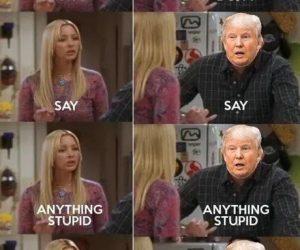 Don't Say Anything Stupid Donald Trump Lysol Clorox Meme