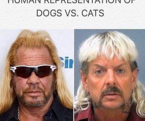 Human Representation Of Dogs Vs Cats – Tiger King Meme