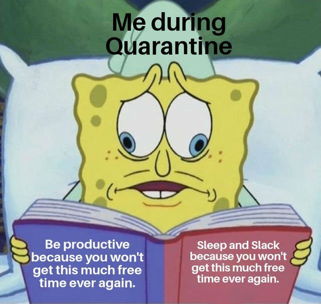 me during quarantine meme