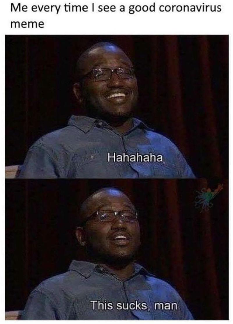 me every time i see a good coronavirus meme