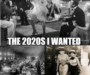 The 2020s I Wanted Vs The 2020s I Got – Meme
