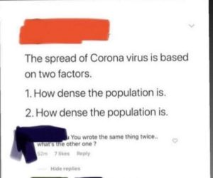 The Spread Of Corona Virus Is Based On Two Factors – How Dense The Population Is