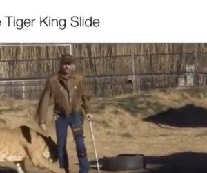 The Tiger King Slide meme