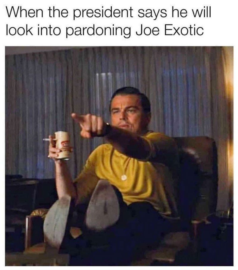 when the president says he might look into pardoning joe exotic meme