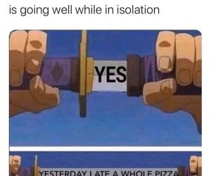 When You Ask Someone If Their Diet Is Going Well In Isolation – Meme