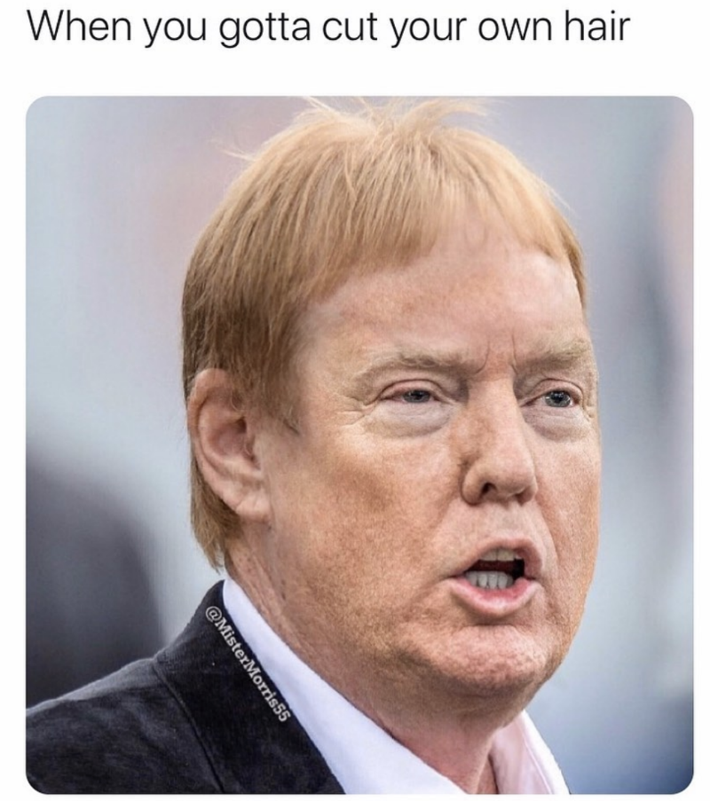 when-you-gotta-cut-your-own-hair-donald-trump-mark-davis-meme.png