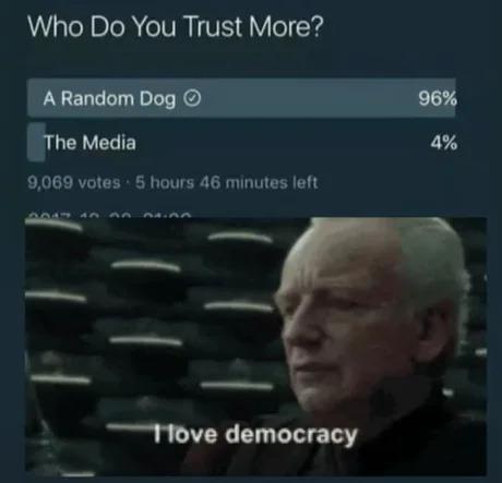 who do you trust more a random dog or the media