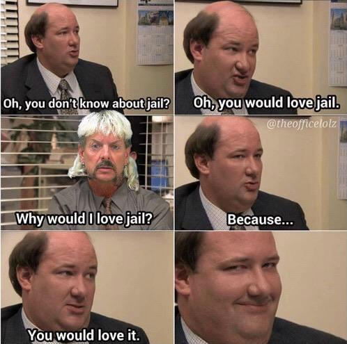 you would love jail tiger king meme