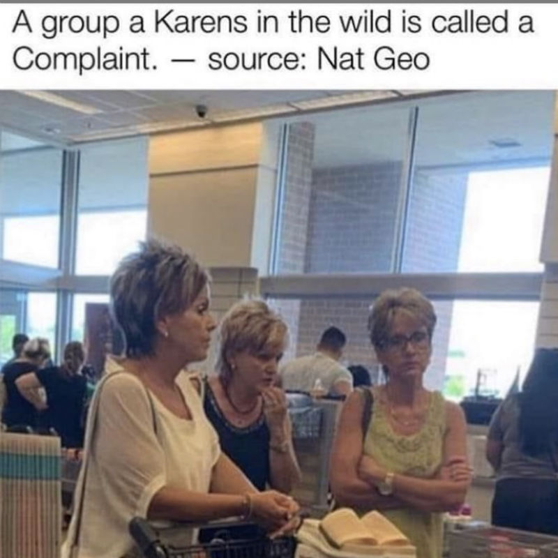 a group of karens is called a complaint meme