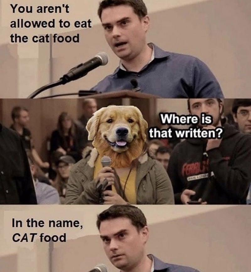 ben shapiro vs dog meme