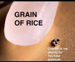 Grain Of Rice Chances Of Me Buying Youtube Premium – Meme