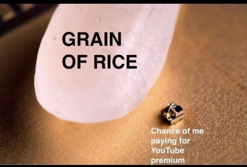grain of rice chances of me buying youtube premium meme