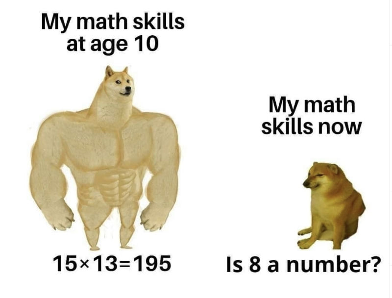 my math skills at age 10 vs my math skills now meme