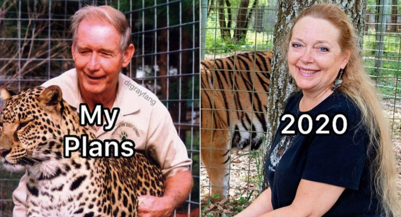 my plans 2020 carole baskin tiger king meme