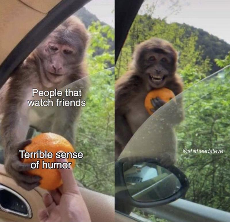 people that watch friends meme