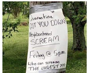Quarantine Got You Down Neighborhood Scream Sign
