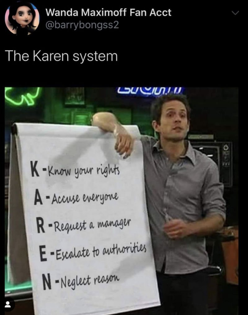the karen system meme