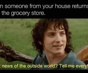 When someone from your house returns from the grocery store – meme