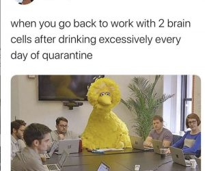 When You Go Back To Work After Quarantine – Meme