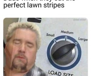 Dads When They Cut The Perfect Lawn Stripes – Meme