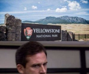 Earthquakes Reported Near Yellowstone National Park – Meme