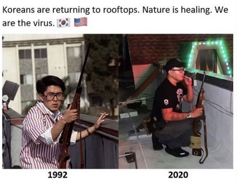 koreans are returning to roofs