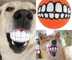Grinz Balls for Dogs -This Dog Toy Will Give Your Pet A Human Smile
