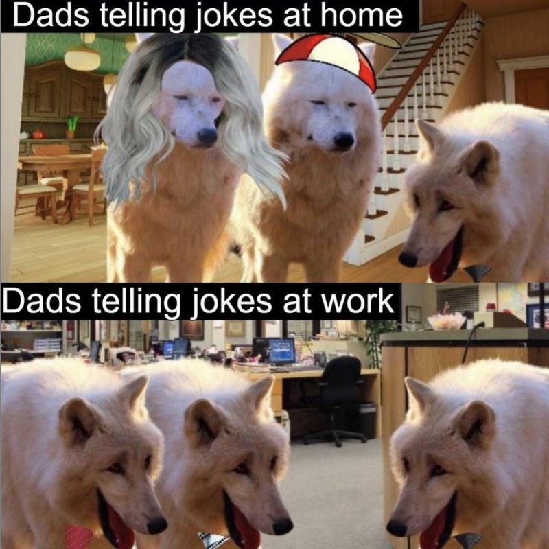 dads telling jokes at home vs telling jokes at home