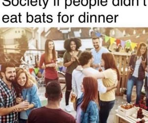 Society If People Didn't Eat Bats For Dinner – Meme
